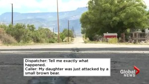 Police release 911 audio after bear attacks little girl in Colorado